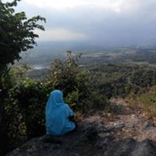 Basya Zia's avatar