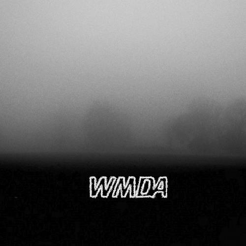 WMDA's avatar