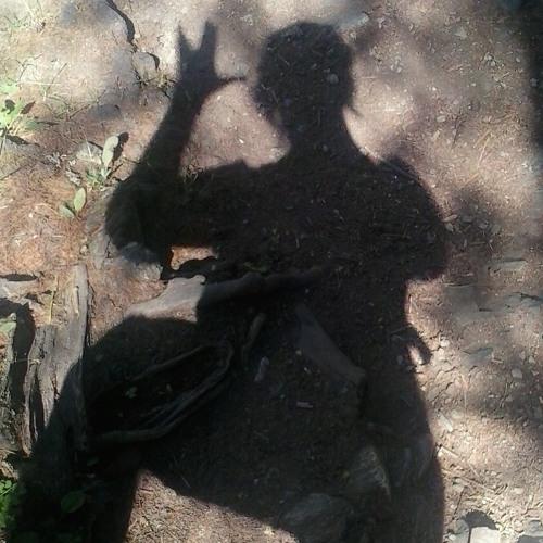 dassteff's avatar