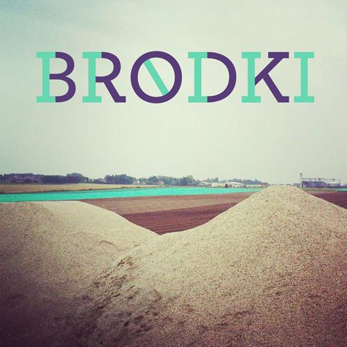 BRODKI's avatar