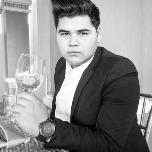 Luis Estevane's avatar
