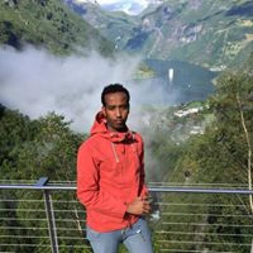 Ahmednasir A. Hassan's avatar