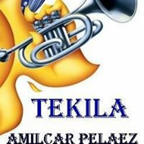 Amilcar Pelaez's avatar
