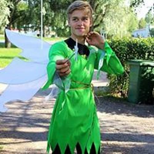 Juha Aladin Laine's avatar