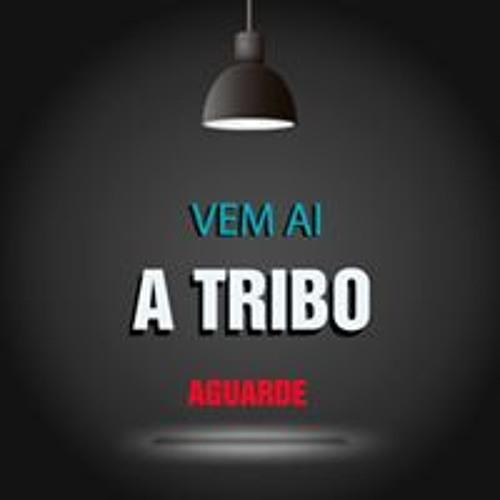 Claudio Pinheiro Ferreira's avatar