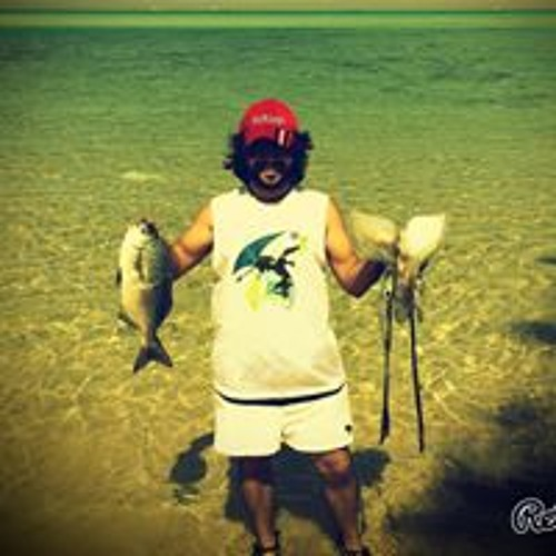 Mostafa El Zarw's avatar