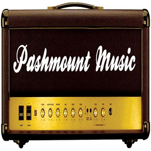 PashmountMusic's avatar