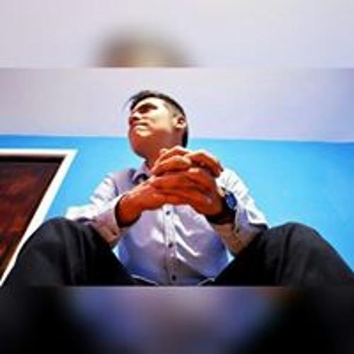 Rodolfo Sanchez Limo's avatar