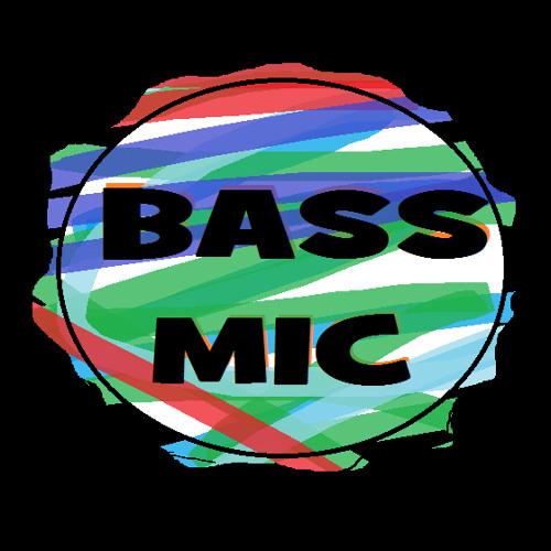 BassMic's avatar