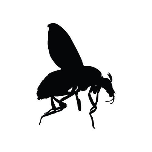 Ormia's avatar