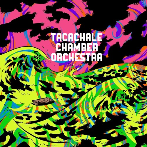 Tacachale Chamber Orch.'s avatar