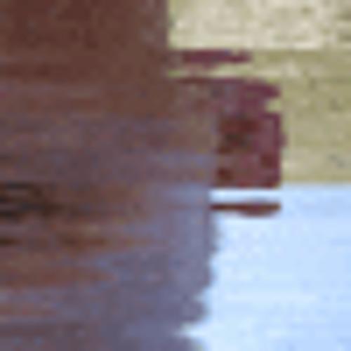 coasty's avatar