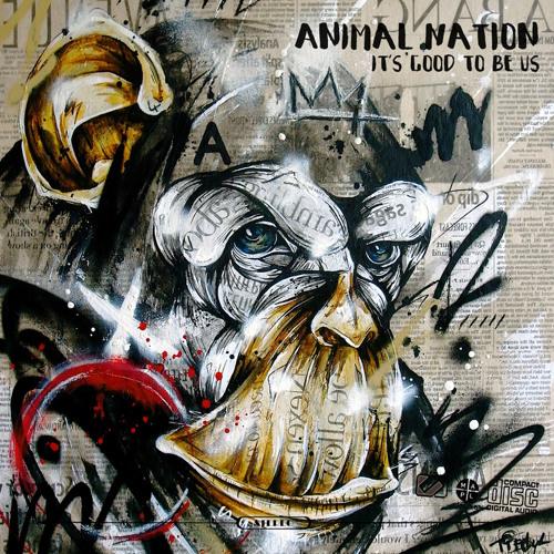 Animal Nation's avatar