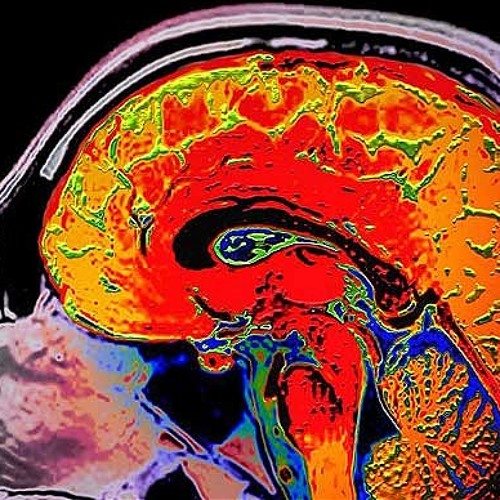 Carga Cerebral Records's avatar