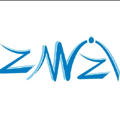 Z-WIZI's avatar