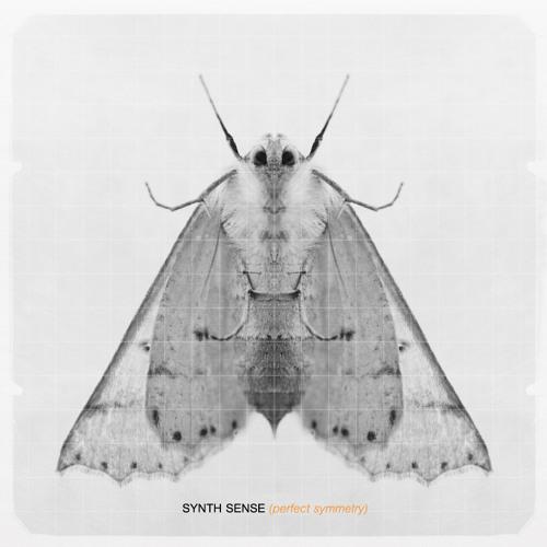 Synth Sense's avatar