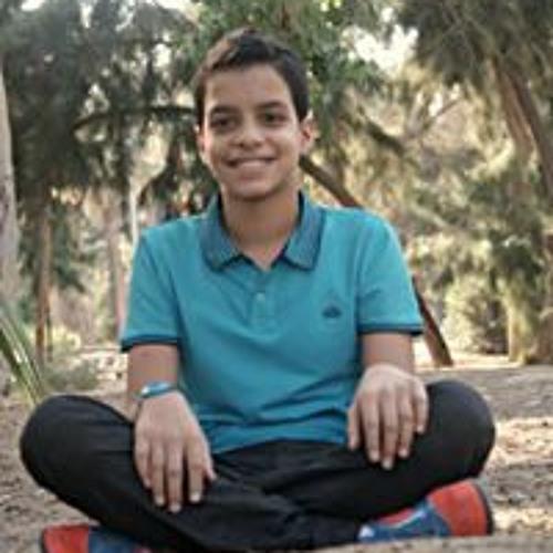 Mohammed Hesham's avatar