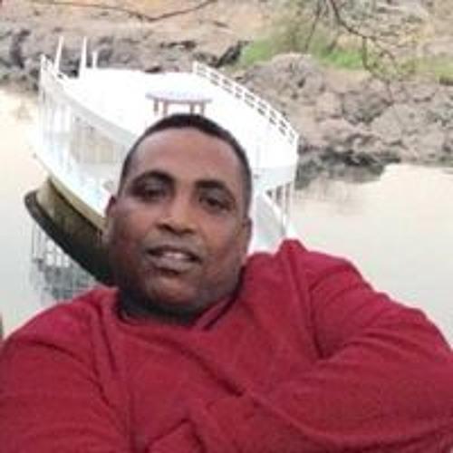 علي اسماعيل's avatar