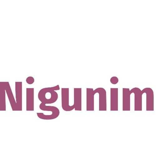 Nigunim's avatar