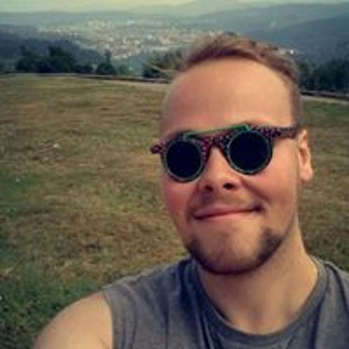 Milan Johannes Despotovic's avatar
