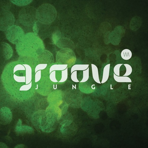 The Groove Jungle's avatar
