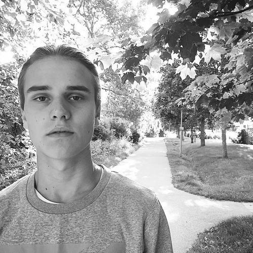 Kristian Ravelius's avatar