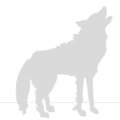 Nemoreus's avatar