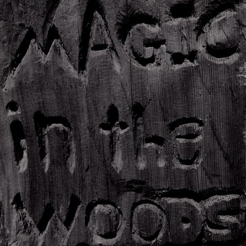 Magic in the Woods's avatar