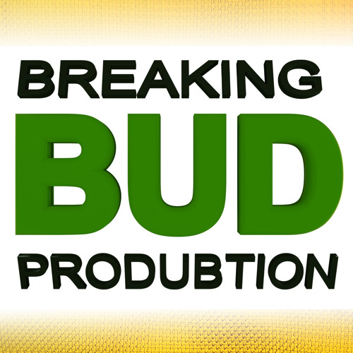Breaking Bud Produbtion's avatar