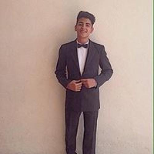 Hector Vidaurre's avatar
