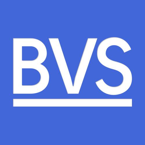 Bas van Straaten's avatar