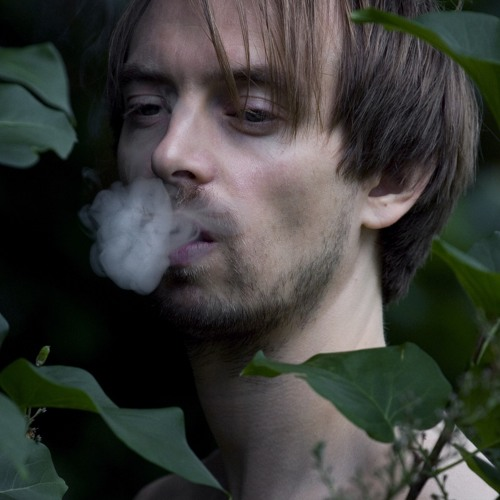 Bror Forsgren's avatar