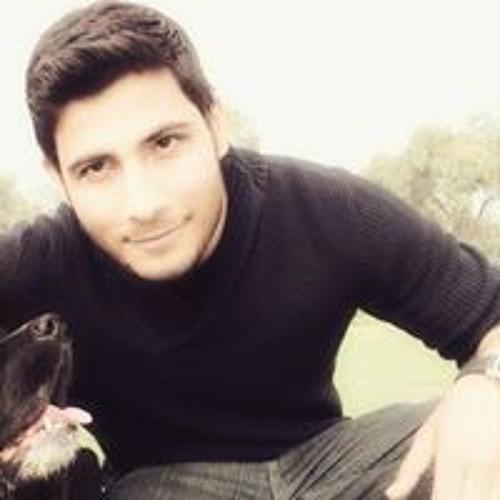 Robin Singh's avatar