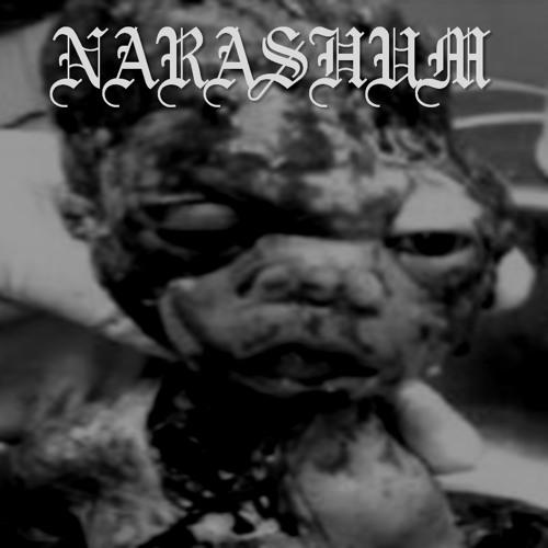 Narashum's avatar