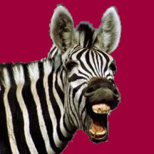 Svane & Meinhardt's avatar