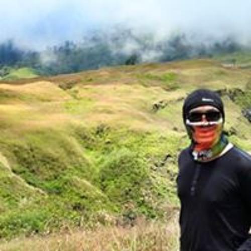 Julyan Situngkir's avatar