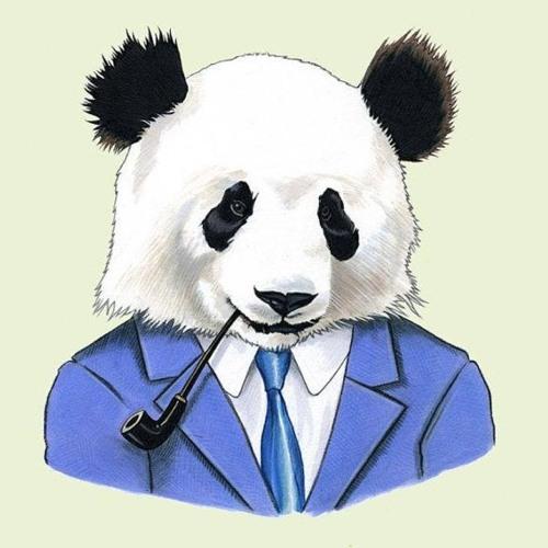 brandonbubba321's avatar