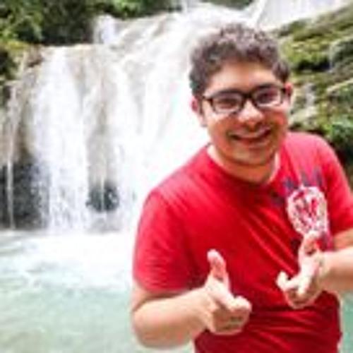 Luis Covarrubias's avatar