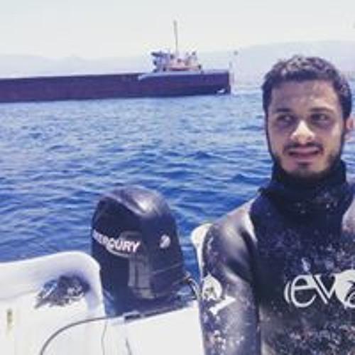 Mohamad Ghali's avatar
