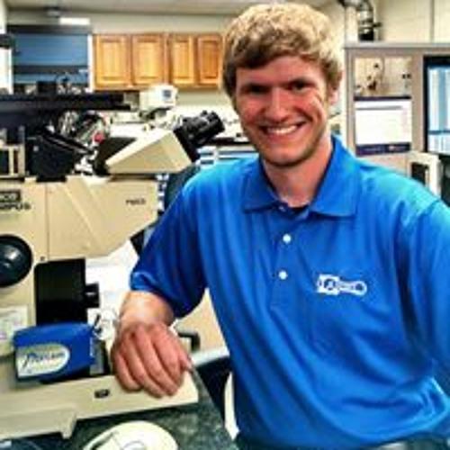 Peter Bruschi's avatar