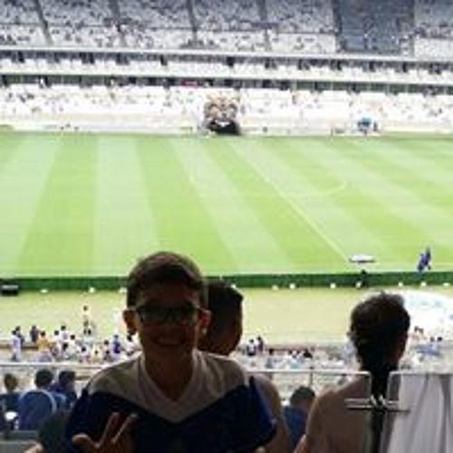 Nicolas Araujo Couto's avatar