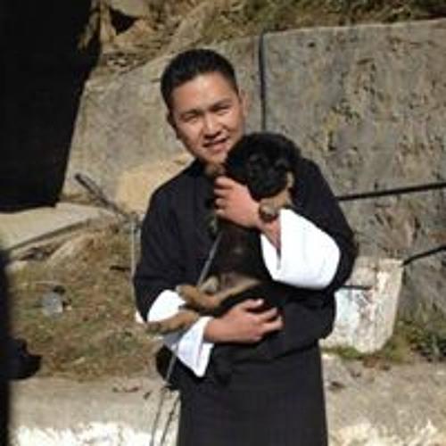 Karma B Wangdi's avatar