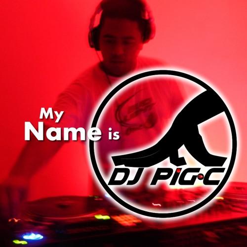 DJ Pig-C - WTF Perreo MASTER