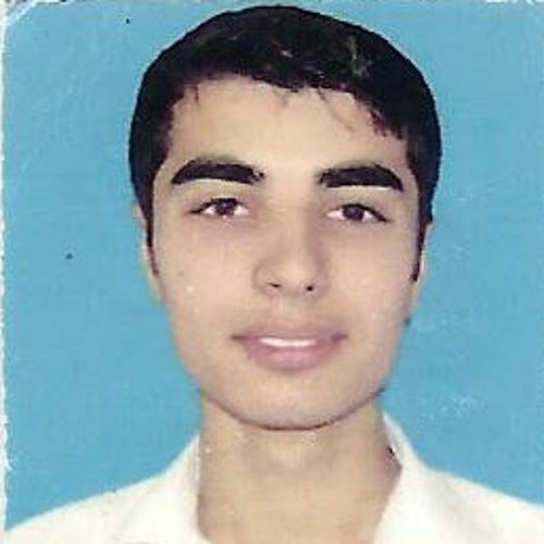 Sultan Zaib's avatar