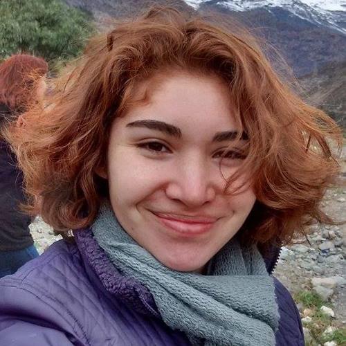 DanielaSilvaAlviña's avatar