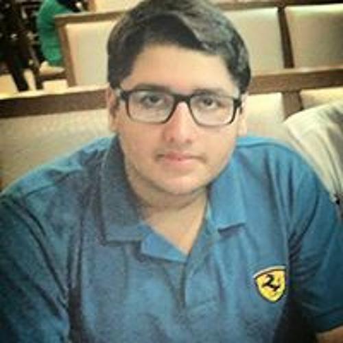 Chaudry Muhammad Waleed's avatar