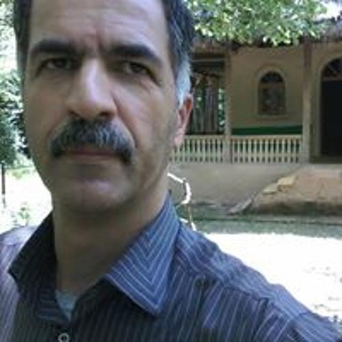 Majid Hamed's avatar