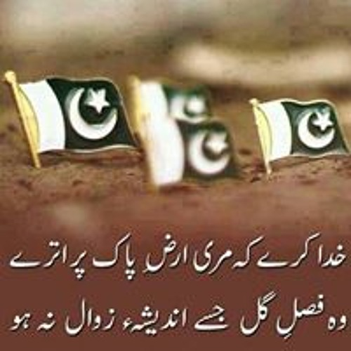 Sharo Qureshi's avatar