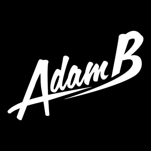 Adam B⠀'s avatar