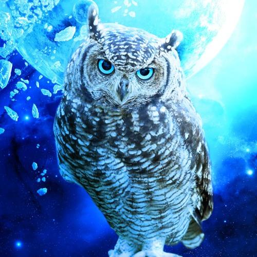 NightOwl's avatar